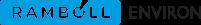 ramboll_environ_logo_cyan_rgb_201x25px